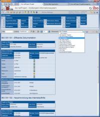 Ad-hoc-Abfrage im Multiprojektinformationssystem (ibo netProject)