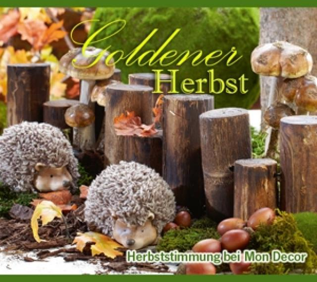 Herbstdekoration  fairNEWSde