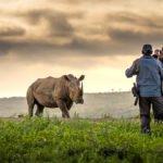Mit-dem-Rhino-Flüsterer-Elela-Africa