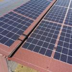 Ertragreiche Sonnenernte auf Dach und Feld