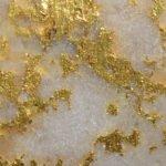 Goldvererzung von der Fosterville-Mine; Foto: Kirkland Lake Gold