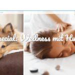 SPA und Wellness mit Hund wird in diesen Wellnesshotels mit Hundebetreuung zum Vergnügen
