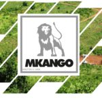 Quelle: Mkango Resources Ltd.