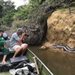 Der Luxus ungezähmter Natur – Mapari Wilderness Camp: Dschungel-Abenteuer in Guyanas Regenwald