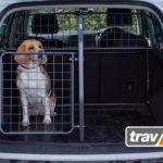 Sortimentserweiterung: Heckgittertüren für den sicheren Ausstieg aus dem Auto