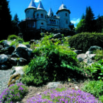 Heilsame Schönheiten - das Aostatal in voller Blütenpracht