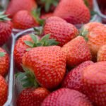AGRAVIS-Experte im Interview zur Erdbeersaison 2020
