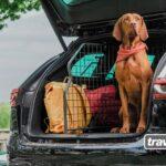 Travall® Guard Hundegitter: mehr Sicherheit bei maximaler Flexibilität und Alltagstauglichkeit
