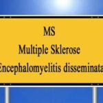 MS ist eine chronisch-entzündliche Erkrankung