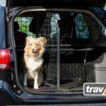 Travall® Packs: Traumkombinationen für den sicheren Transport von Hunden im Auto